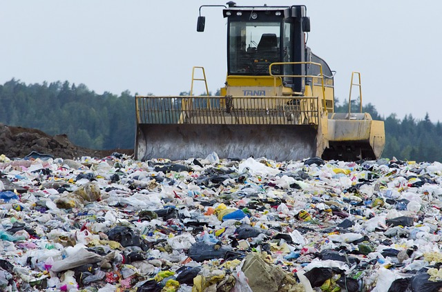 Waste Pollution: Causes, Sources, Effects & Solutions