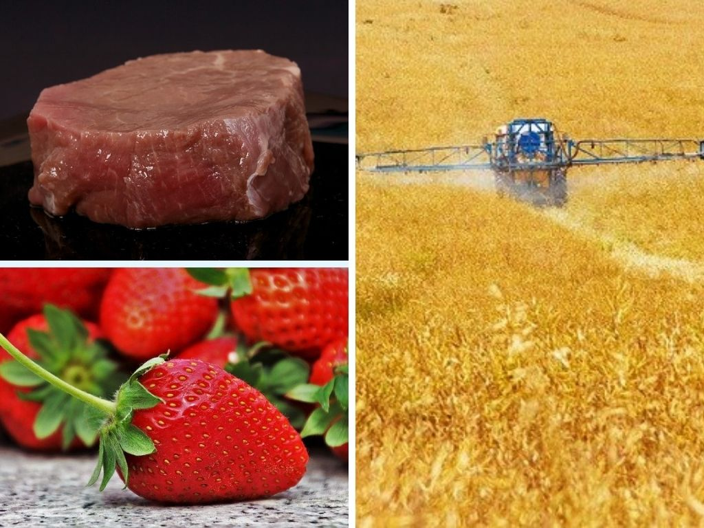 Foods & Crops That Use The Most Pesticides & Fertilizers, & Foods With The Most Pesticide Residue