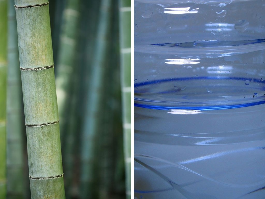 Is Bamboo More Sustainable Than Plastic? (Bamboo vs Plastic Comparison)
