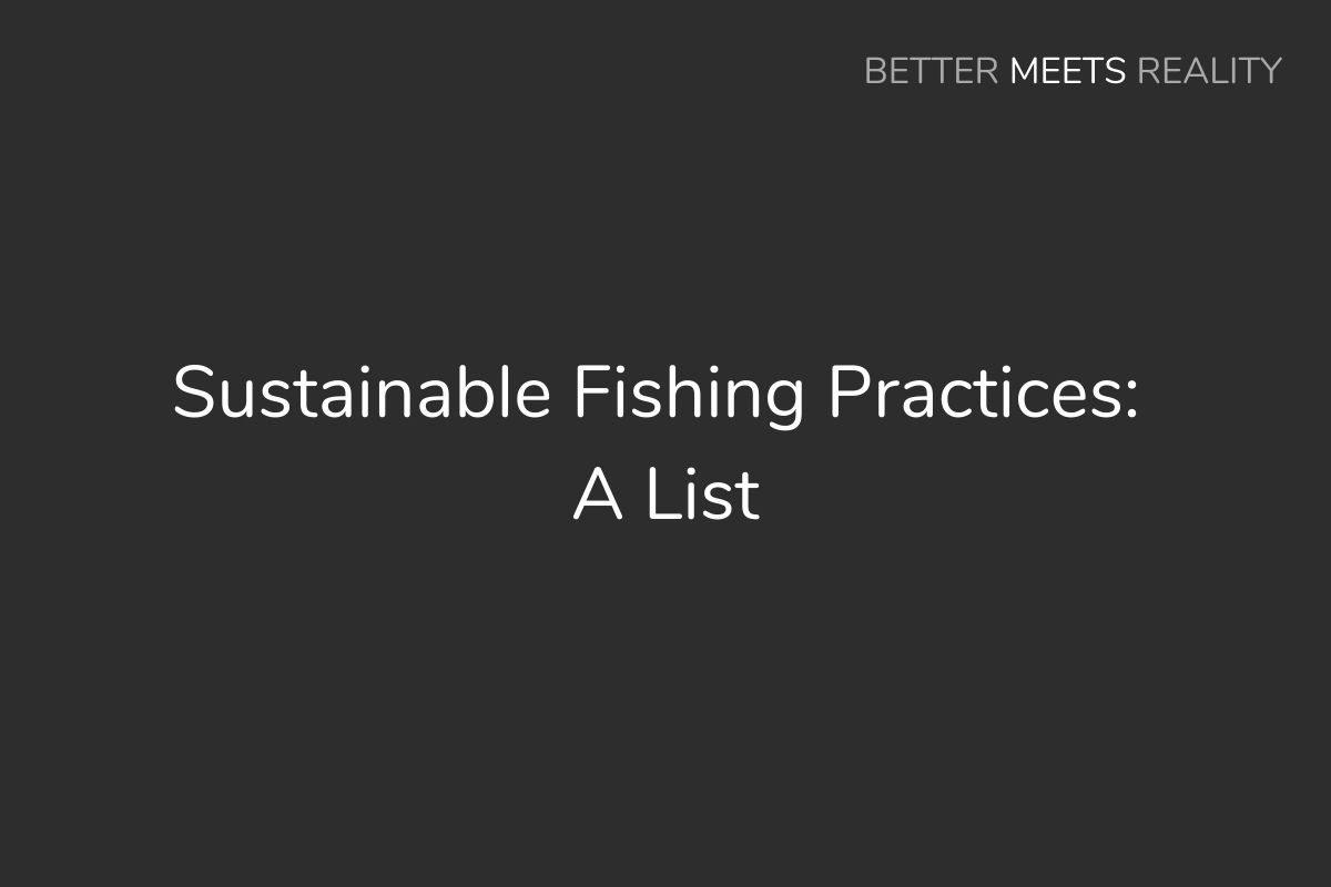 Sustainable Fishing Practices: A List